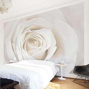 Bilderwelten Vliestapete Blumen Breit »Pretty White Rose«