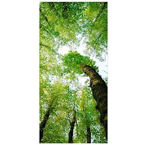 Flächenvorhang Set Bäume des Lebens Grün Blätter Entspannung Freiheit Wald 250x120cm | Schiebegardine Schiebevorhang Raumtrenner Vorhang Raumteiler Gardine Paravent Wandbild XXL Deko Dekor Größe: 250 x 120cm inkl. magnetischer Aluminiumhalterung