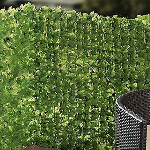 Sichtschutzhecke Efeu  grün