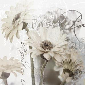 Artland Glasbild »Gerberas Botanik Blumen Collage«