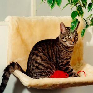 Katzen-Heizkörperliege »Plüsch«
