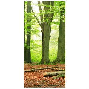 Flächenvorhang Set Mighty Beech Trees Wald Bäume Erholung Laub Moos 250x120cm | Schiebegardine Schiebevorhang Raumtrenner Vorhang Raumteiler Gardine Paravent Wandbild XXL Deko Dekor Größe: 250 x 120cm inkl. transparenter Halterung